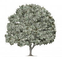 iStock money-tree
